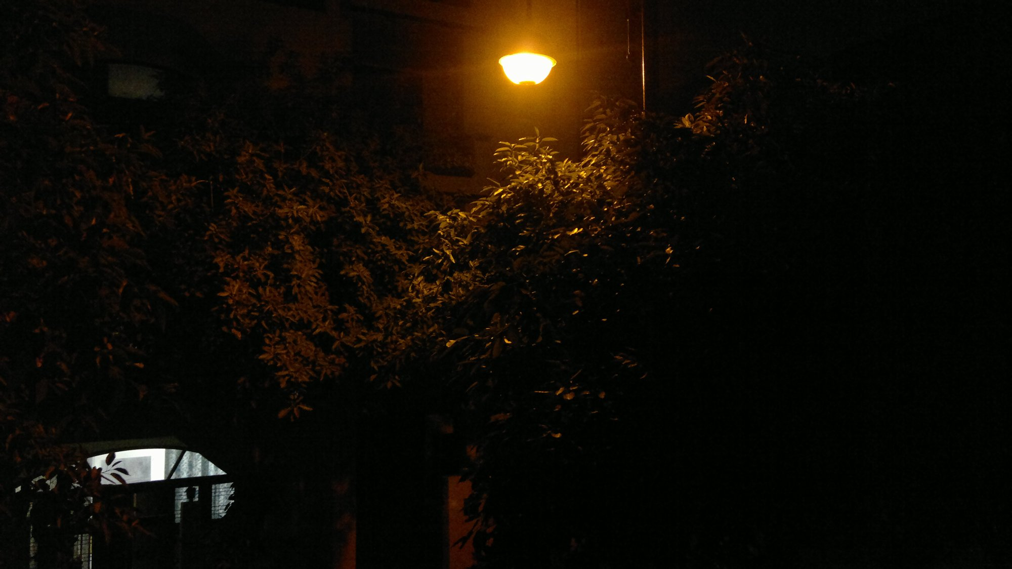 Nokia N8 outdoor without flash.jpg